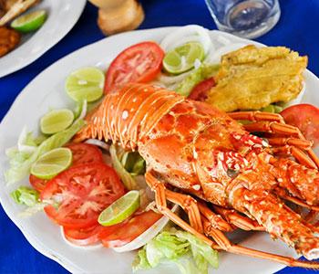 Gastronomía De Los Roques